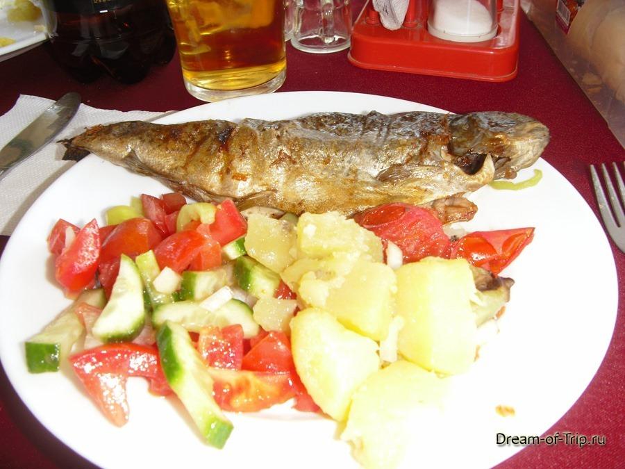 Рыбалка + Пикник. Экскурсия в Турции. Форель на обед.