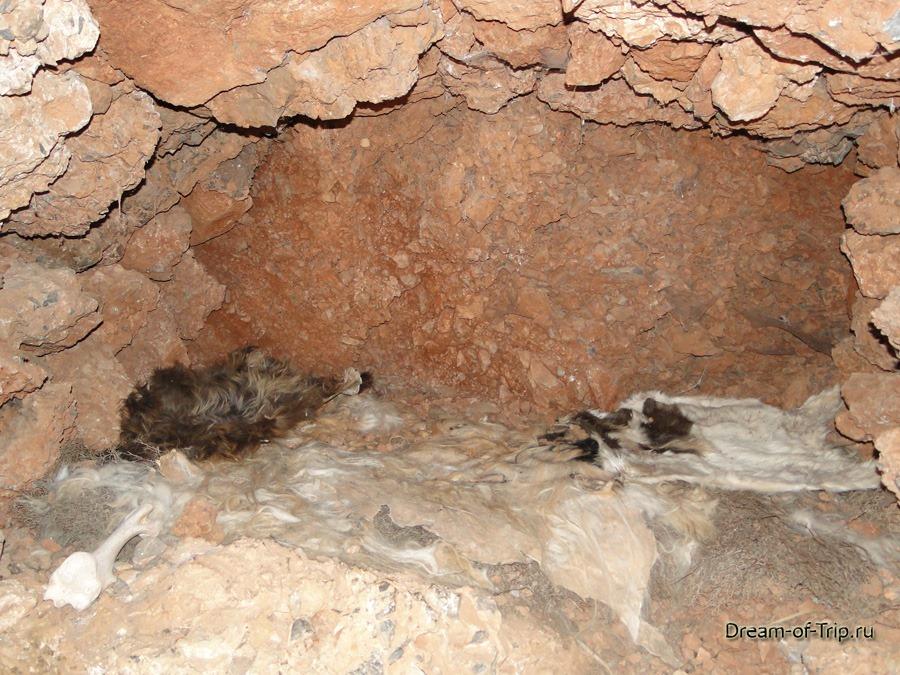 Музей HOMO SAPIENS на Крите. Ночлег в пещере.