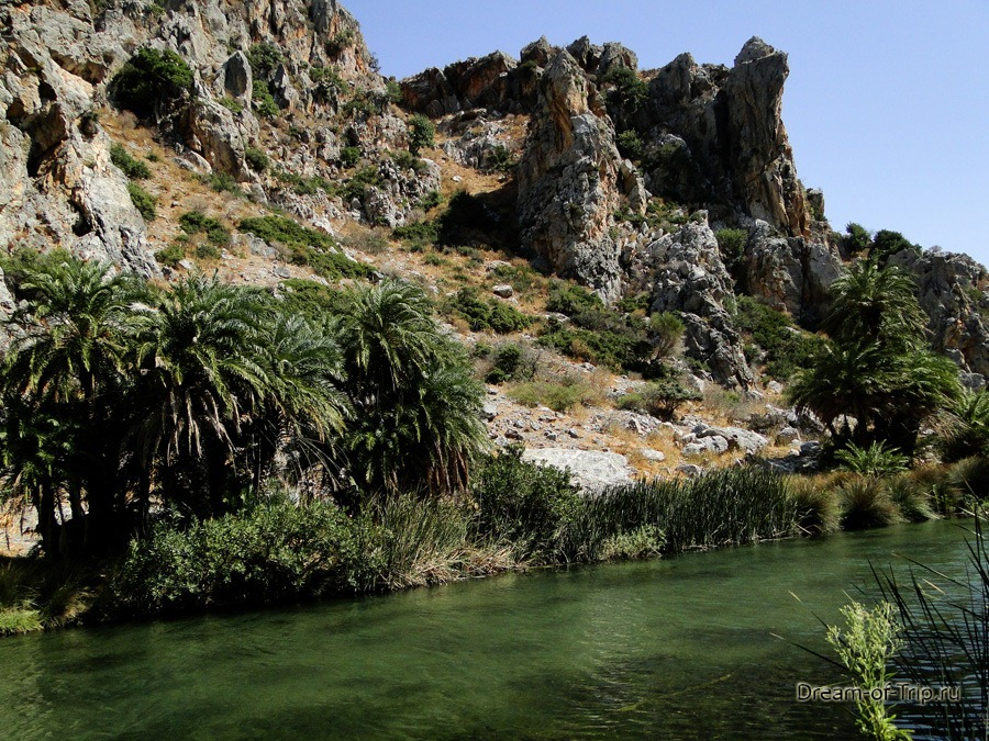 Пальмовый Пляж Превели на Крите. Речка Курталиотис.