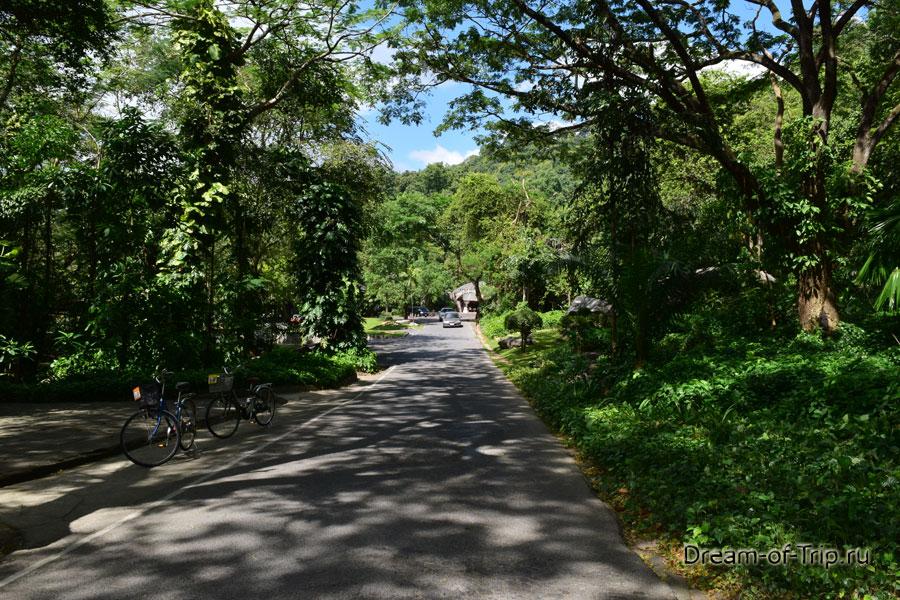 Дорожки на территории зоопарка.