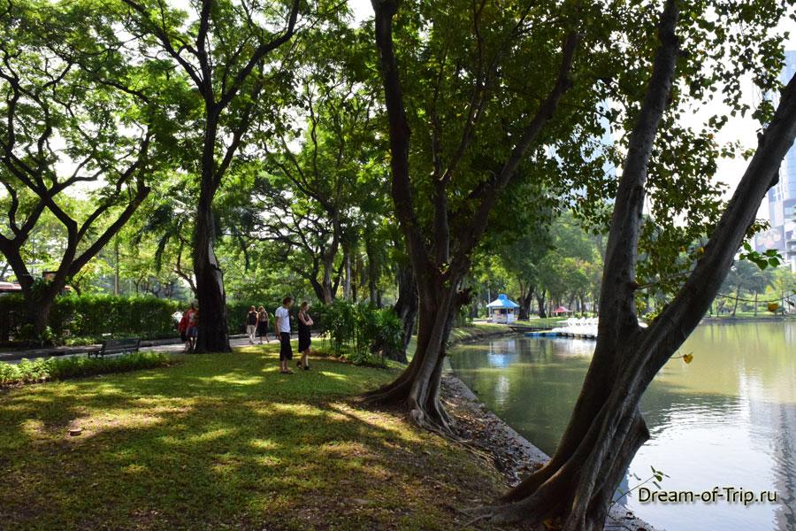 Люди рассматривают варанов в Люмпини парке