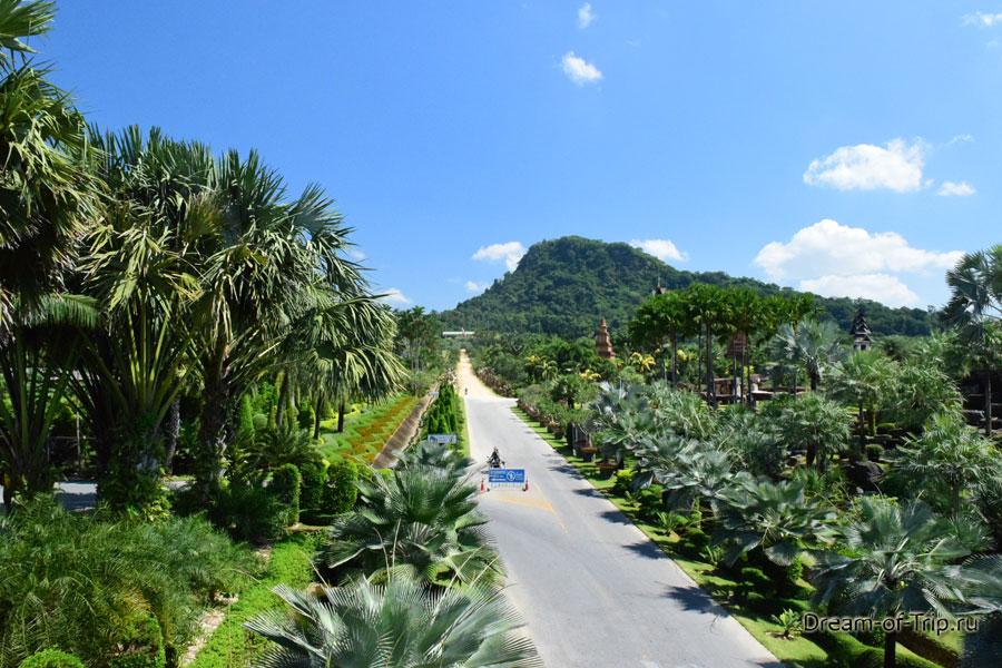 Пальмы в Нонг Нуч.