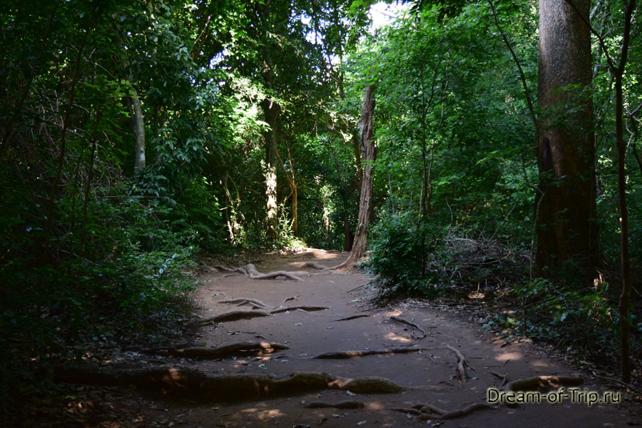 Дорога к водопаду Эраван